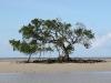 Australien 2005-067