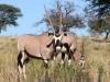 Namibia-004