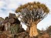 Namibia-015