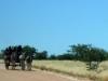 Namibia-066