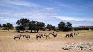 Namibia-013